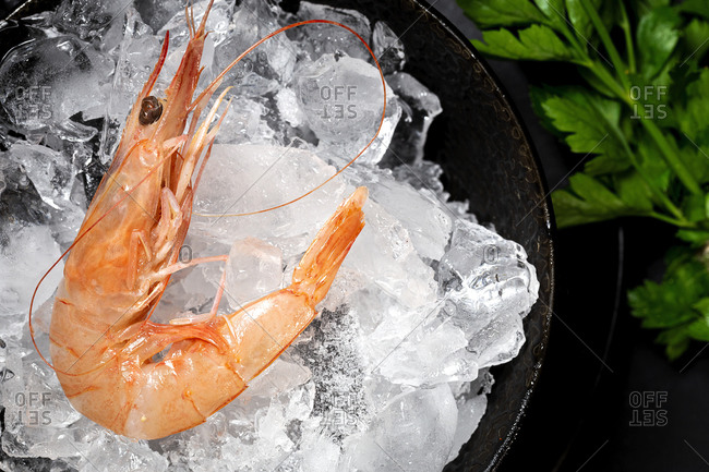 Prawn in bowl with ice and parsley placed on black table in luxury restaurant