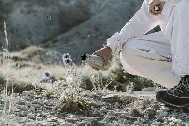 Man watering plant with thermos flask in an arid landscape