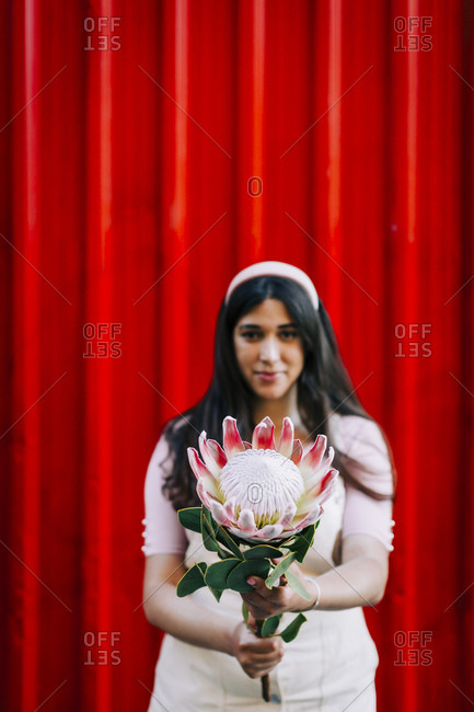 Young woman in front of red wall- presenting protea flower