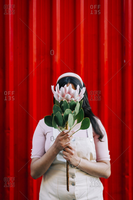 Young woman in front of red wall- hiding behind protea flower