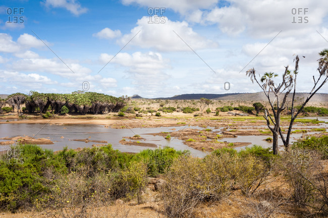 Galana River, Tsavo East National Park, Kenya, East Africa, Africa