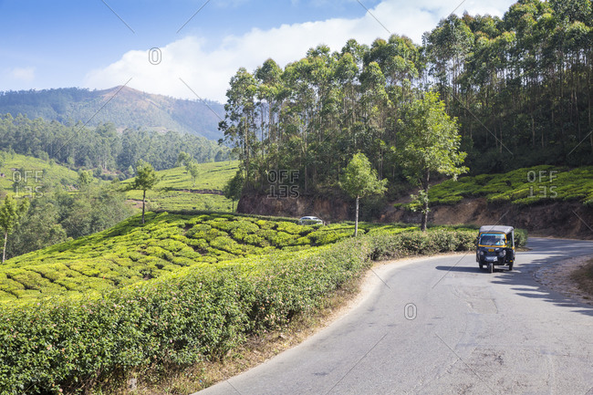 February 7, 2020: Auto rickshaw on road passing by Tea estate, Munnar, Kerala, India, Asia