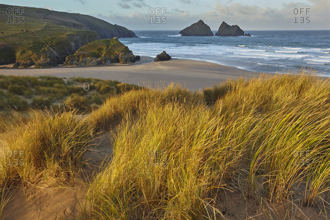 Sand dunes at Holywell Bay, a place made famous by BBC drama Poldark, near Newquay, north Cornwall, England, United Kingdom, Europe