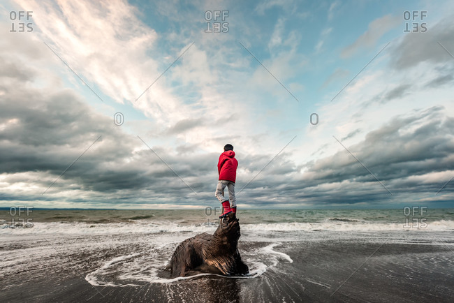 Boy in a red jacket and boots standing on a large piece of driftwood