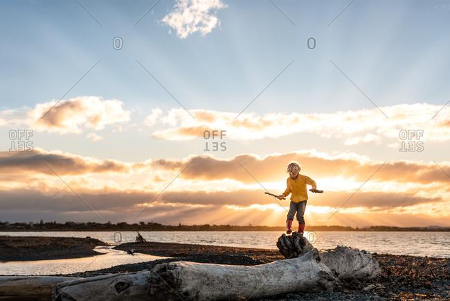 Little boy climbing on driftwood on a beach at sunset