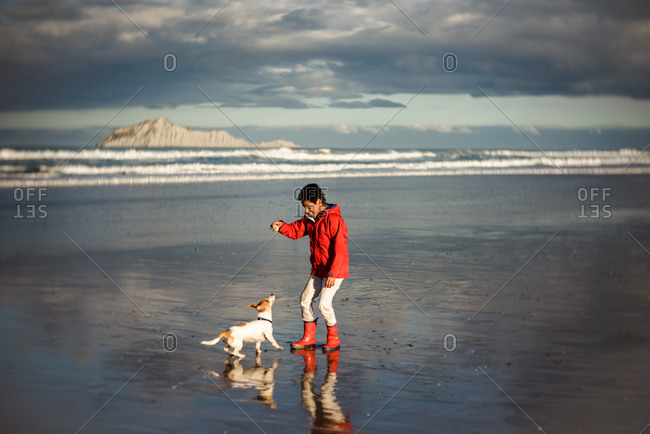 Tween boy playing with dog and ball on a beach