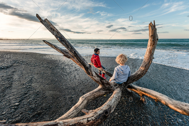 Two boys sitting on large piece of driftwood by the ocean