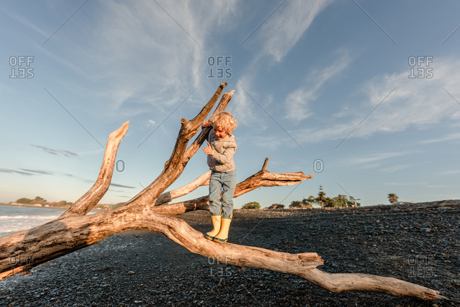 Young boy climbing on driftwood on a beach