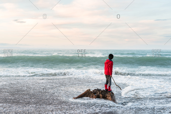 Rear view of boy standing on driftwood in the ocean