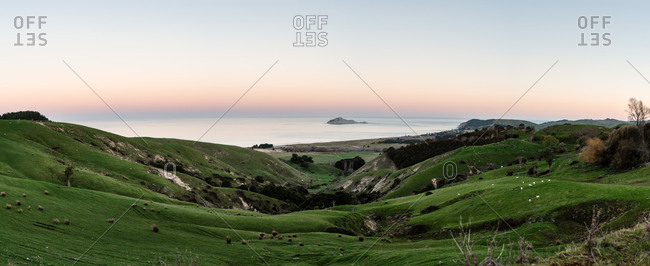 Panoramic view of Te Motu-o-Kura island and green hills in New Zealand at sundown