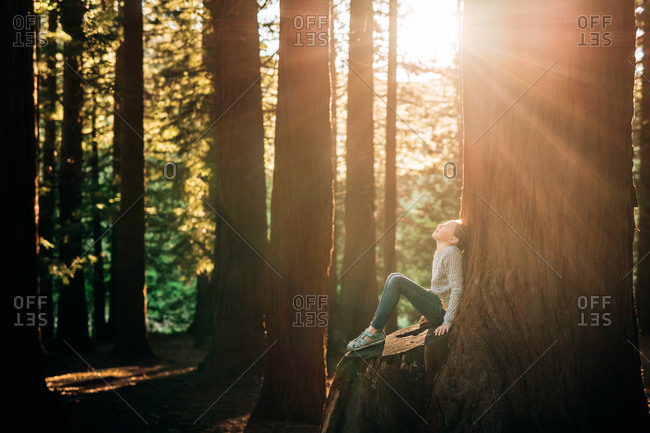Girl sitting in the woods looking up with sun flare