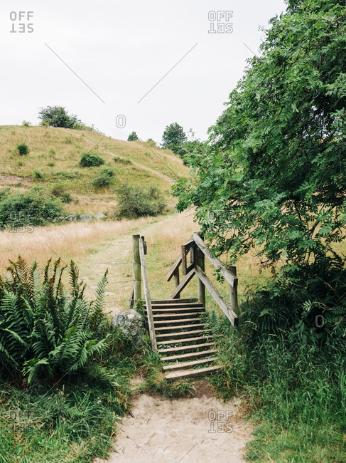 Wooden steps on rural path