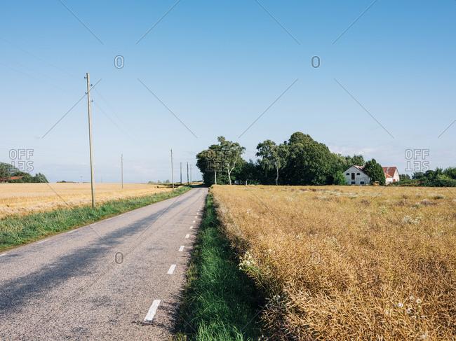 Road, leading through rural landscape in Osterlen, Sweden