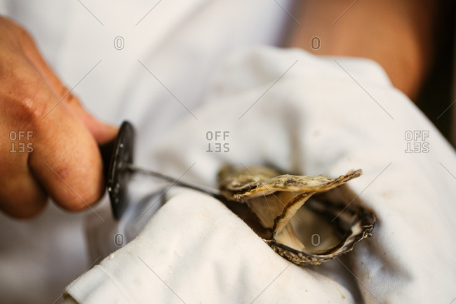 Person using knife to shuck an oyster