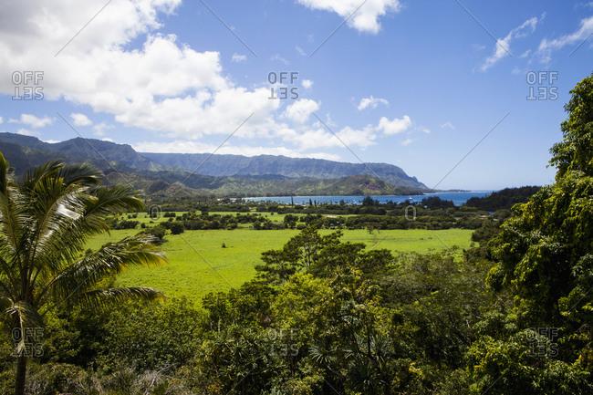 Scenic landscape in Kauai, Hawaii