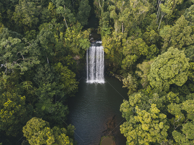 Aerial shot of Millaa Millaa Falls surrounded by lush green forest in Tropical Queensland, Australia