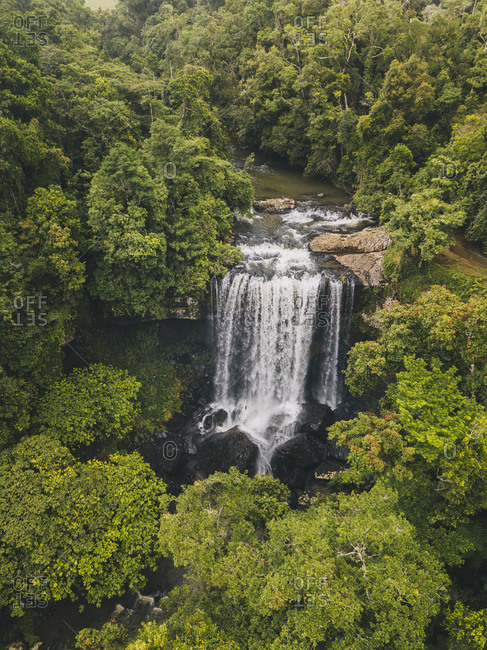Aerial shot of Zillie Falls surrounded by lush green forest in Tropical Queensland, Australia