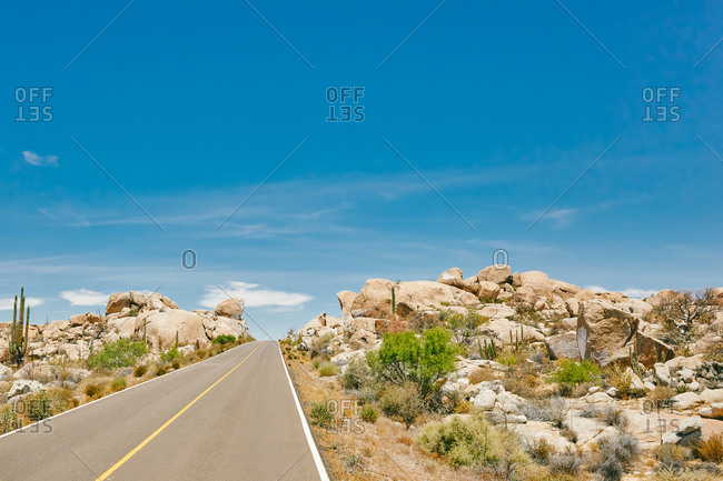 Isolated highway during the summer in the desert of Baja, Mexico.