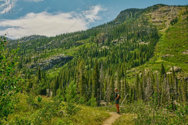 Young man hiking Aspen mountain during summer in Colorado.