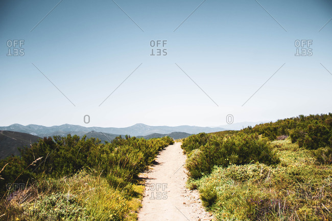 Stone path surrounded by vegetation against mountains and blue sky