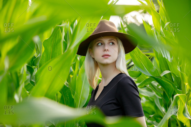 Blonde woman in hat and black dress in cornfield