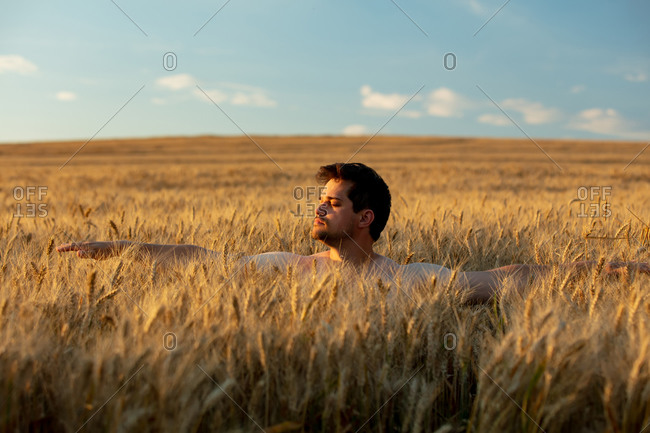 Man without clothes in wheat field in sunset time