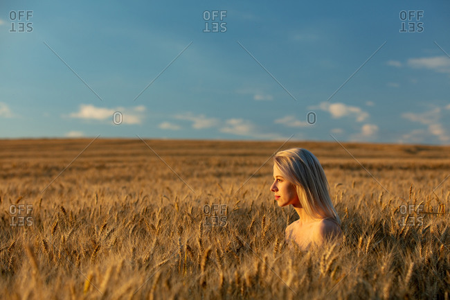 Blonde woman without clothes in wheat field in sunset time