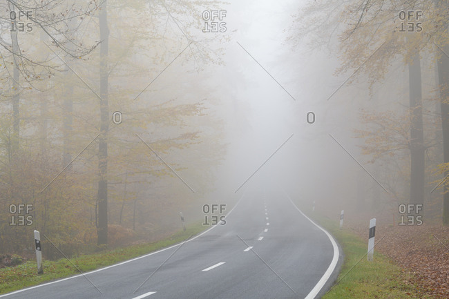 Forest with road and fog in autumn, Odenwald, Hesse, Germany