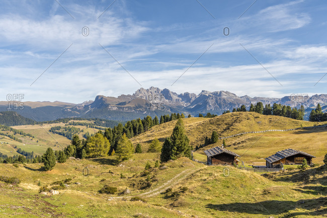 Alpe di Siusi, Castelrotto, South Tyrol, Bolzano province, Italy, Europe. Autumn on the Alpe di Siusi with a view of the Geisler peaks