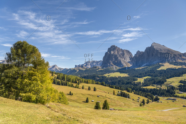 Alpe di Siusi, Castelrotto, South Tyrol, Bolzano province, Italy, Europe. Autumn on the Alpe di Siusi with a view of the Sassolungo massif