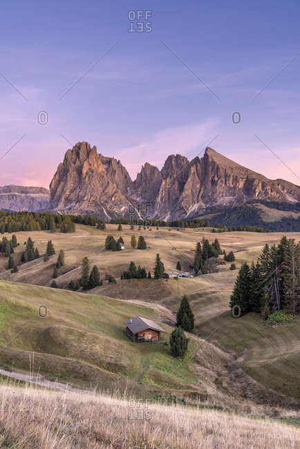 Alpe di Siusi, Castelrotto, South Tyrol, Bolzano province, Italy, Europe. Dusk on the Alpe di Siusi with a view of the Sassolungo massif