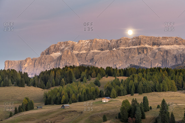 Alpe di Siusi, Castelrotto, South Tyrol, Bolzano province, Italy, Europe. The moon rising over the Sella group