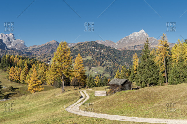 Hochabtei, Alta Badia, Bolzano province, South Tyrol, Italy, Europe. Autumn on the Armentara meadows with the Peitlerkofel in the background