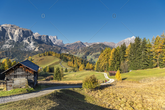 Hochabtei, Alta Badia, Bolzano province, South Tyrol, Italy, Europe. Ascent to the Armentara meadows. In the back the Puez Group and the Peitlerkofel