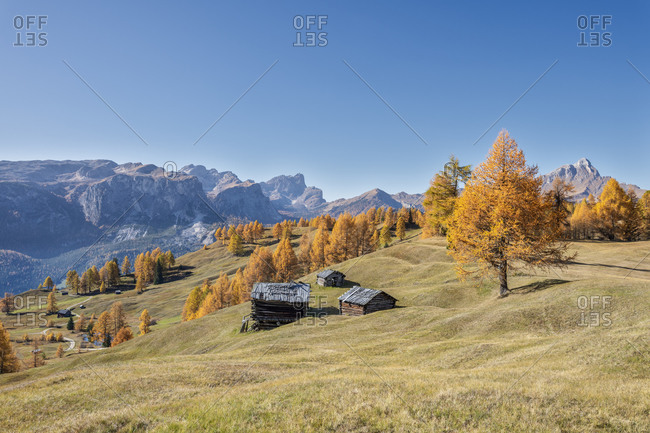 Hochabtei, Alta Badia, Bolzano province, South Tyrol, Italy, Europe. Autumn in the Armentara meadows. In the background the Puergruppe, the Geislerspitzen and the Peitlerkofel