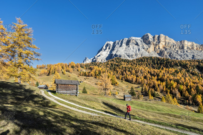 Hochabtei, Alta Badia, Bolzano province, South Tyrol, Italy, Europe. Ascending to the Armentara meadows. In the background the peaks of the Neunerspitze, Zehnerspitze and Heiligkreuzkofel