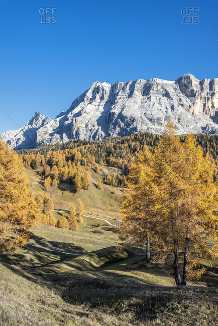 Hochabtei, Alta Badia, Bolzano province, South Tyrol, Italy, Europe. Autumn on the Armentara meadows, above the rock faces of the Neuner, Zehner and Heiligkreuzkofel