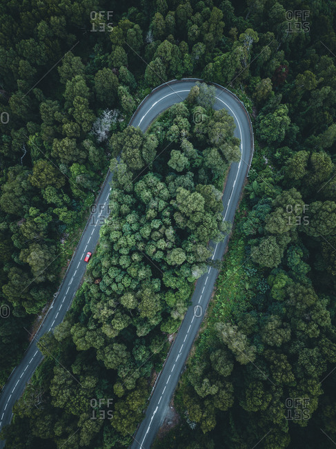 Azores, Sao Miguel, road, bend, forest, drone pick-up
