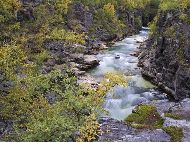 Abisco National Park, Laponia, Sweden