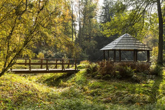 Europe, Poland, Silesian Voivodeship, Brynek - Botanic Garden