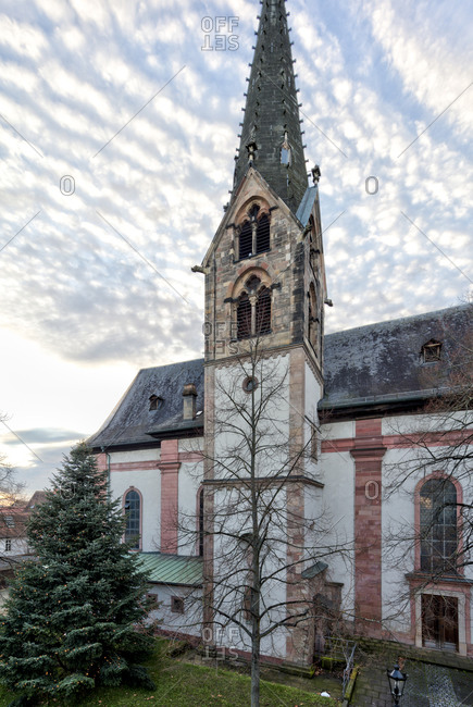 Our Lady Parish Church, Christmas tree, Christmas, Aschaffenburg, Franconia, Bavaria, Germany, Europe