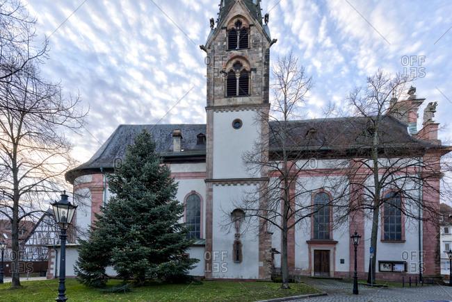 Our Lady Parish Church, Christmas tree, Christmas, Aschaffenburg, Franconia, Bavaria, Germany, Europe