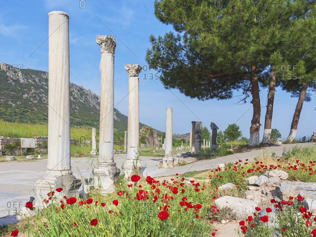 View of the Commercial Agora,  Ephesus, Turkey, Asia