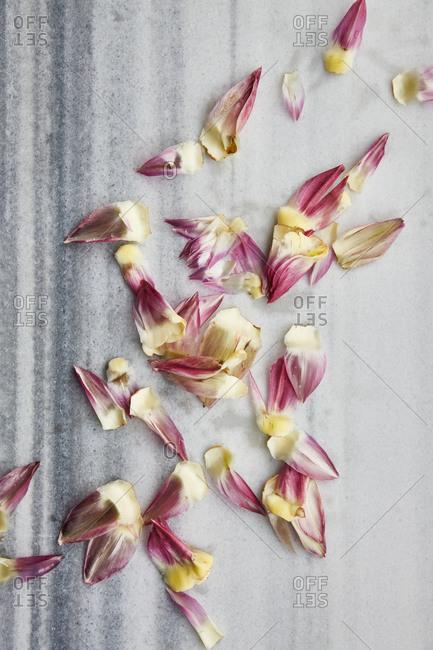 Purple artichoke leaves on a marble surface