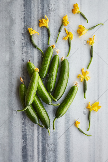 Natural cucumber with yellow flowers