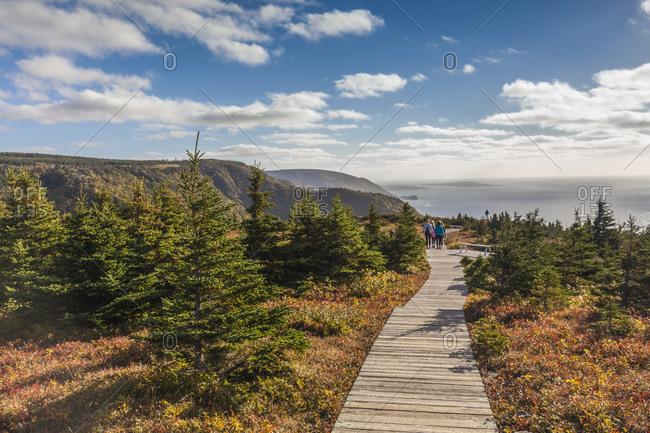 Canada, Nova Scotia, Cabot Trail. Cape Breton Highlands National Park, walkway of the Skyline Trail.