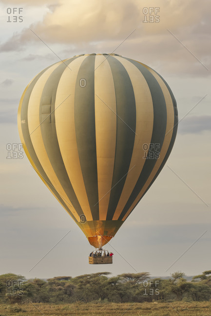 March 7, 2018: Hot air balloon ride over Serengeti National Park at sunrise, Tanzania, Africa.