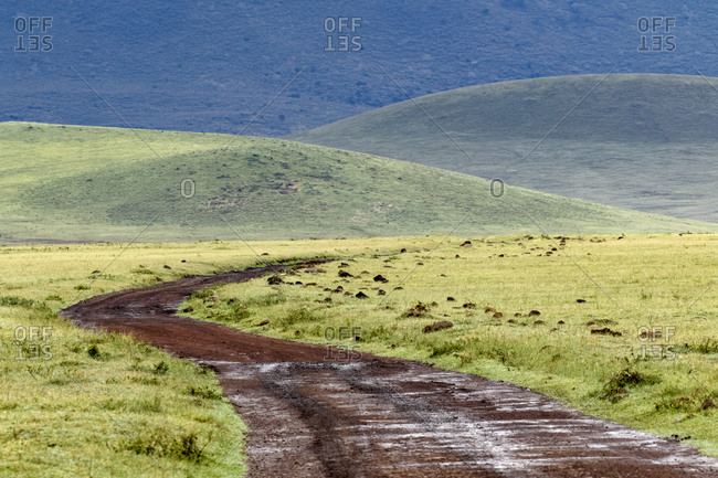 Rural road winding across valley floor of the Ngorongoro Crater, Tanzania, Africa.