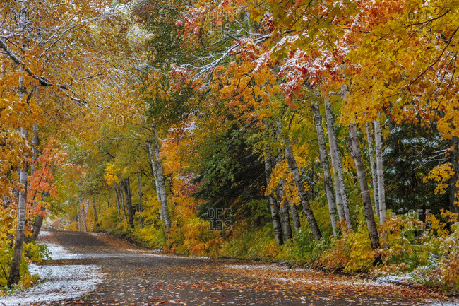 Light snowfall on Wyoming Road near Copper Harbor in the Upper Peninsula of Michigan, USA
