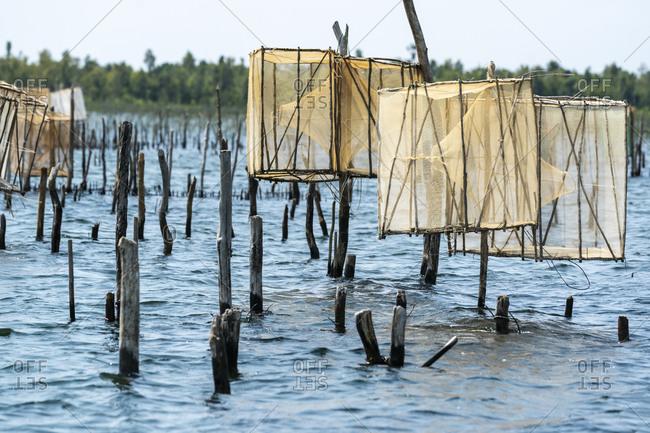 Africa, Madagascar, Lake Ampitabe. Fishing traps are elevated along the shallow channel of Lake Ampitabe.